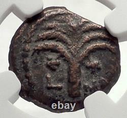 MARCUS AMBIBULUS Augustus Jerusalem Ancient 10AD BIBLICAL Roman Coin NGC i70863