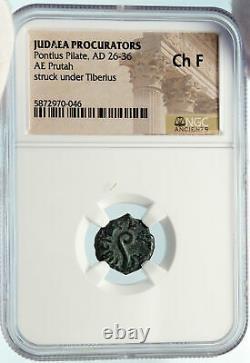 PONTIUS PILATE Tiberius Jerusalem JESUS CHRIST Crucifixion Roman Coin NGC i84437
