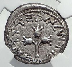 Ancienne Guerre Jewish V Romains Silver Year 4 Shekel Of Jerusalem Coin Ngc I80330