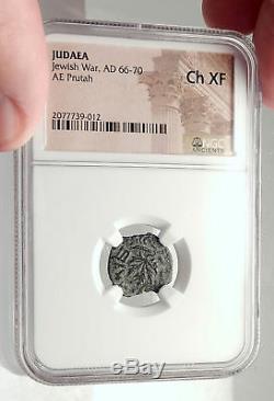 Authentique Antiquité Antique War V Romans 68ad Yr3 Jerusalem Pièce De Monnaie Amphora Ngc I70854