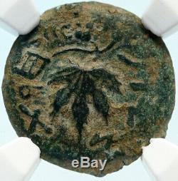 Authentique Guerre Antique Juif Vs Romans 67ad Historique Jerusalem Coin Ngc I83929