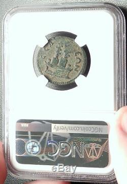 Hadrian Authentique Selge Antique Pisidie monnaie Romaine W Styrax Plantes Ngc I68450