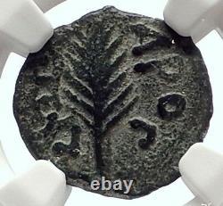 Jérusalem Biblique Saint Paul Nero Porcius Festus Ancient Roman Coin Ngc I70644