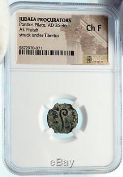 Ponce Pilate Tibère Jérusalem Jésus-christ Crucifixion Romaine Monnaie Ngc I83919