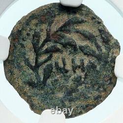 Pontius Pilate Tiberius Jérusalem Jésus Christ Crucifixion Romaine Coin Ngc I83919