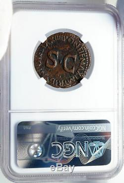 Tiberius Authentique Ancien 22ad Jésus-christ Biblique Temps Romaine Monnaie Ngc I82595