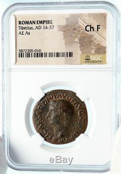 Tiberius Authentique Ancien 22ad Jésus-christ Biblique Temps Romaine Monnaie Ngc I83577