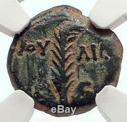 Valerius Grat Romain Jérusalem Préfet Tiberius Livia Biblique Ngc Coin I70835